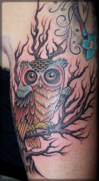 Colourful owl on branch tattoo