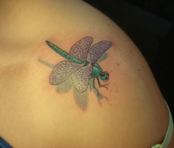 Green dragonfly with wings