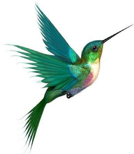 Awesome tattoo design with hummingbird