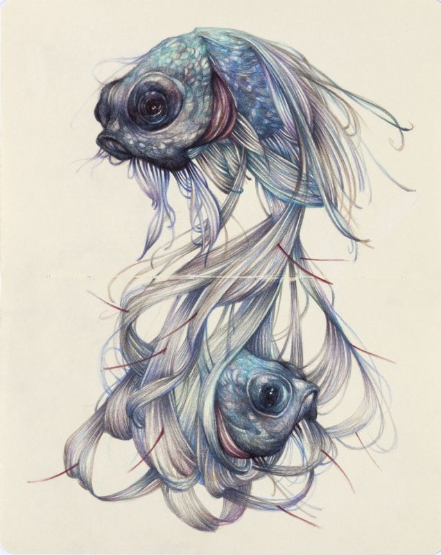 Tattoo design with two fishes