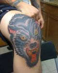 Head of wolf on knee