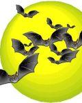 Many small bats on the moon