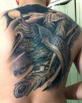 Black phoenix on back