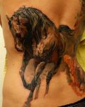 Brown horse and tiger tattoo
