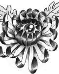 Chrysanthemum with eye