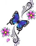 Blue and violet butterfly