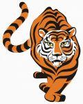Orange and black tiger