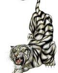 Dark tiger tattoo design