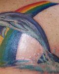 Dolphin and rainbow tattoo