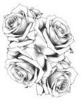 Four roses tattoo design