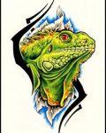 Fantastic green lizard