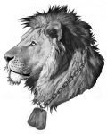 Lion with chain