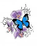 Three orchids and blue butterfly