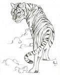 Tiger on the sky