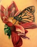 Red flower and butterfly tattoo