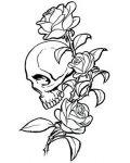 Skull and trhee roses tattoo design