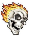 Skull with fires