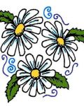 Three lowely daisies