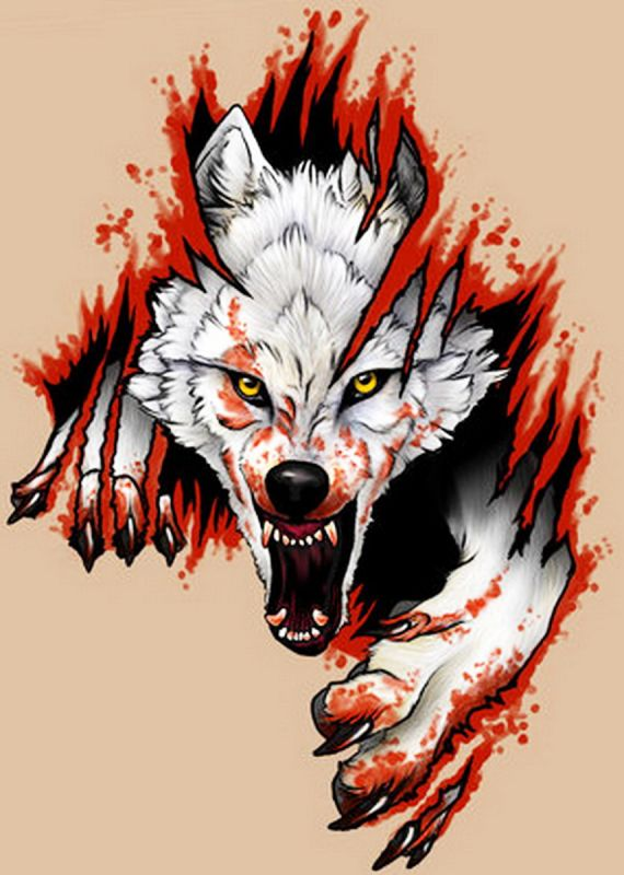 blood wolf moon meaning native american - photo #32